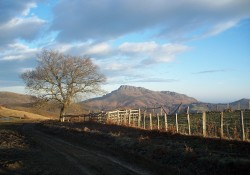 Monte Atxuria, Etxalar